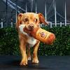 BARK Pumpkin Ale Dog Toy -  Bubblin' Pumpkin Ale - image 2 of 7