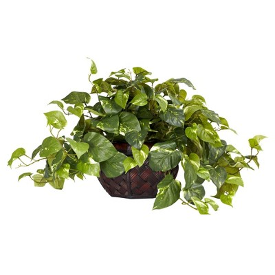 "15"" x 29"" Artificial Pothos Plant in Decorative Vase - Nearly Natural"
