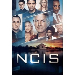 NCIS: The Seventeenth Season (DVD)