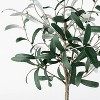 """28.5"""" Artificial Olive Tree in Pot White - Threshold™ designed with Studio McGee - image 3 of 4"""