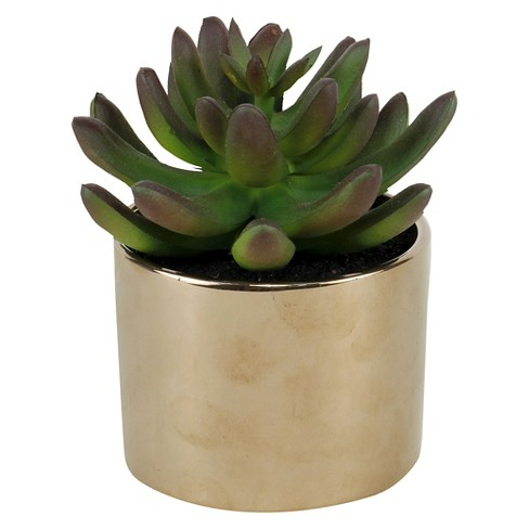 Artificial Potted Succulent - Threshold™ - image 1 of 1
