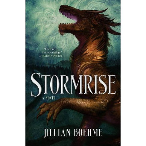 Stormrise - by  Jillian Boehme (Hardcover) - image 1 of 1