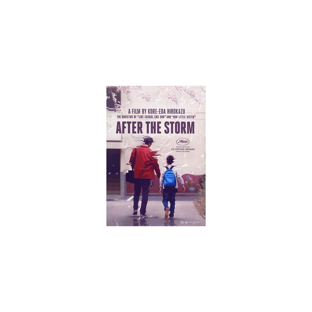 After The Storm (Dvd), Movies