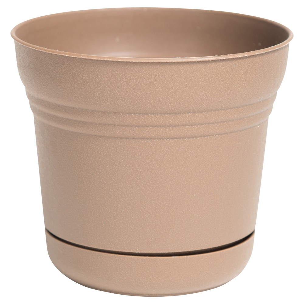 Image of 10 Saturn Planter Chocolate (Brown) Bloem