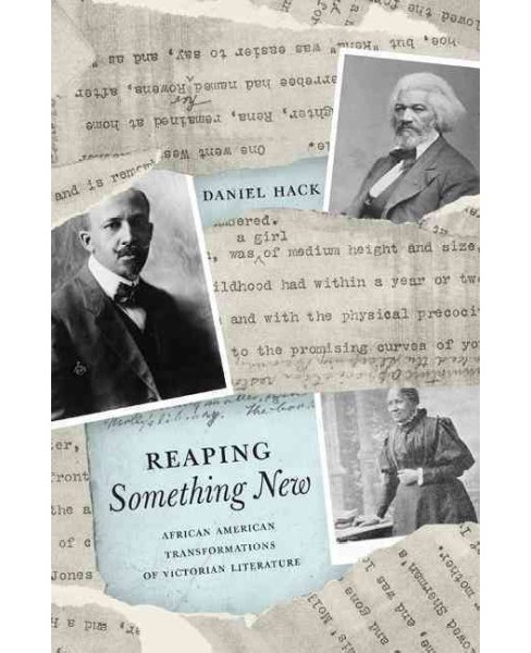 Reaping Something New : African American Transformations of Victorian Literature (Hardcover) (Daniel - image 1 of 1