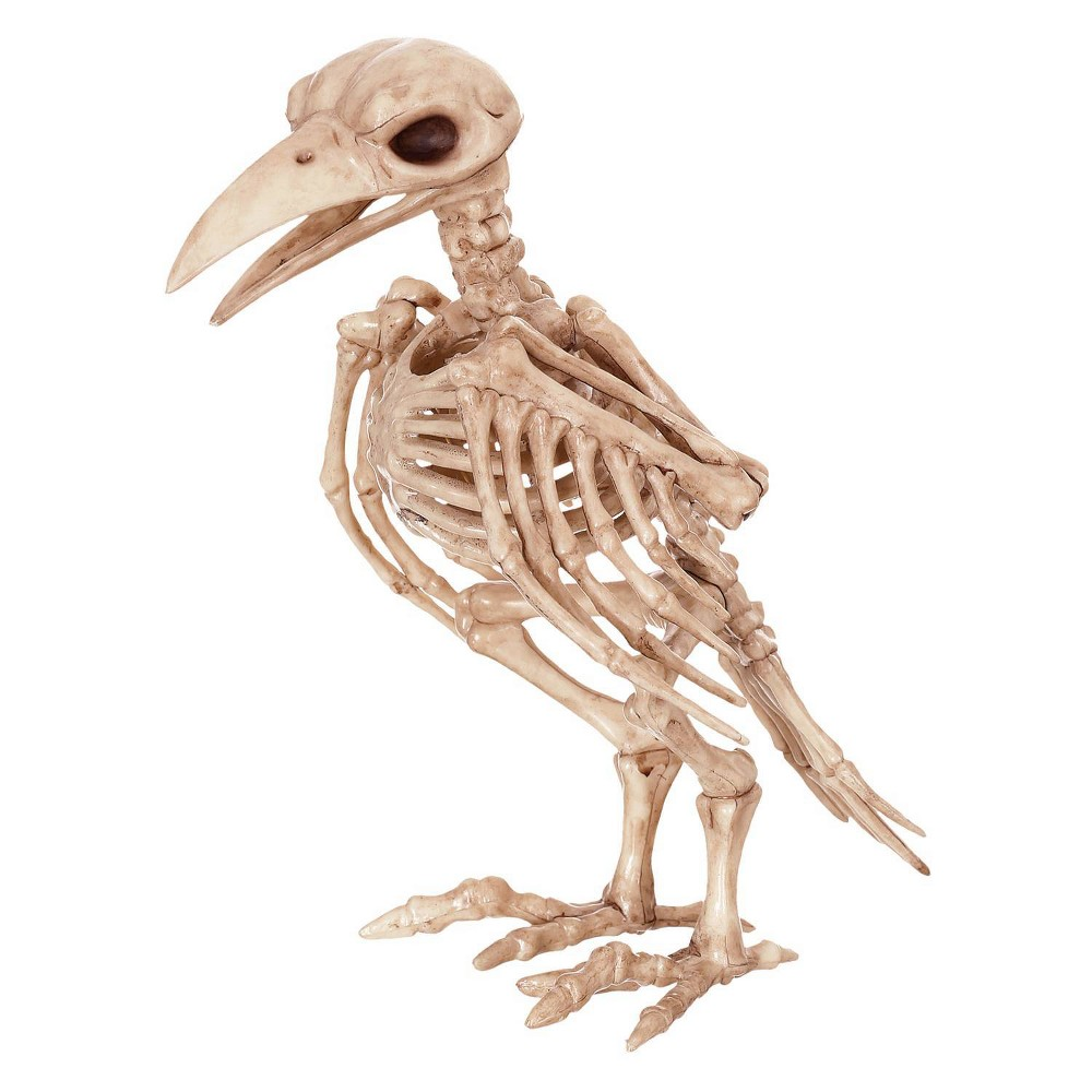 Image of Halloween Skeleton Raven Decor