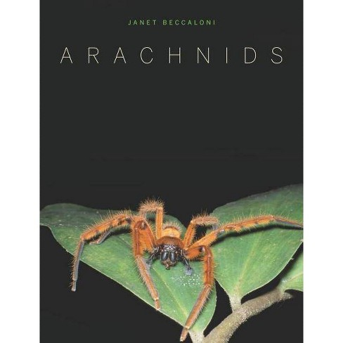Arachnids - by  Janet Beccaloni (Hardcover) - image 1 of 1