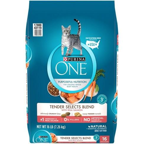 Purina® ONE Salmon & Tuna Flavor Dry Cat Food - image 1 of 4