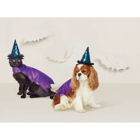 Witch Hat Dog Costume - Hyde & EEK! Boutique™