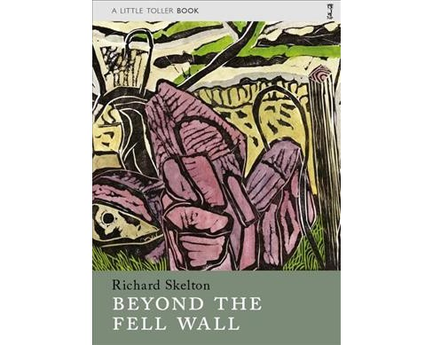 Beyond the Fell Wall -  Reprint (Little Toller Monographs) by Richard Skelton (Paperback) - image 1 of 1
