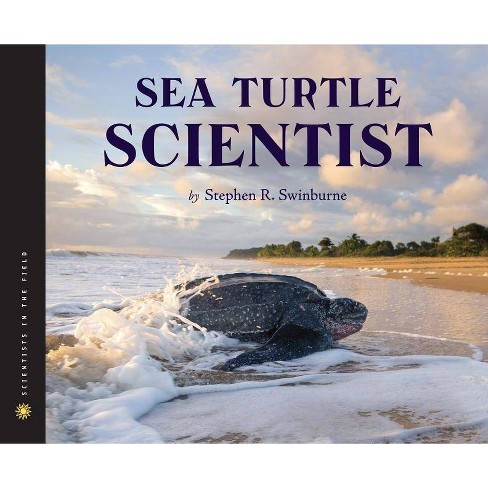 Sea Turtle Scientist - (Scientists in the Field (Hardcover)) by  Stephen R Swinburne (Hardcover) - image 1 of 1