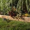 Suncast Landscape Design Border Decorative Natural Rock Plastic Edging (4 Pack) - image 3 of 3