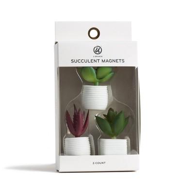3ct Succulent Plant Magnets - U-Brands