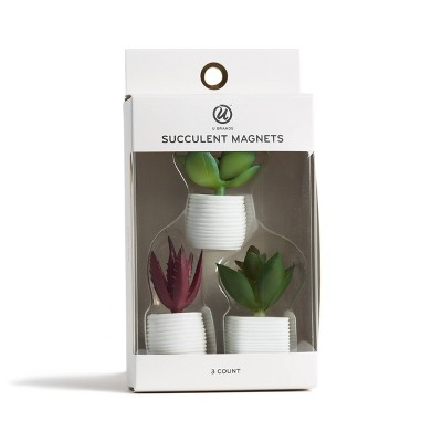 3ct Succulent Plant Magnets - UBrands