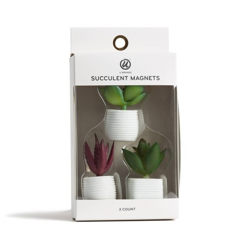 3ct Succulent Plant Magnets - U-Brands - image 1 of 3