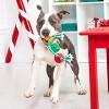 Bark Slay Balls Dog Toy - image 2 of 4
