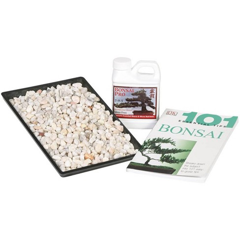 """Starter Success Kit with 13"""" Humidity Tray - Brussel's Bonsai - image 1 of 1"""