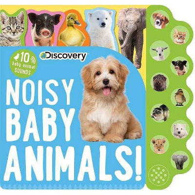 Discovery: Noisy Baby Animals! - (10-Button Sound Books)(Board_book)