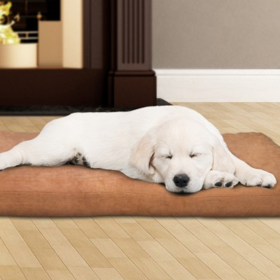 "Petmaker 3"" Foam Dog Bed - Clay"