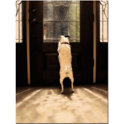 'Anticipation' by Gifty Idea Greeting Cards and Such! Ready to Hang Canvas Wall Art
