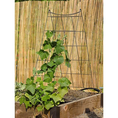 Wire A-Frame Trellis - GARDENER'S SUPPLY CO. - image 1 of 2