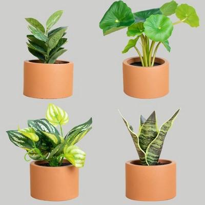 4ct Potted Plants - Bullseye's Playground™