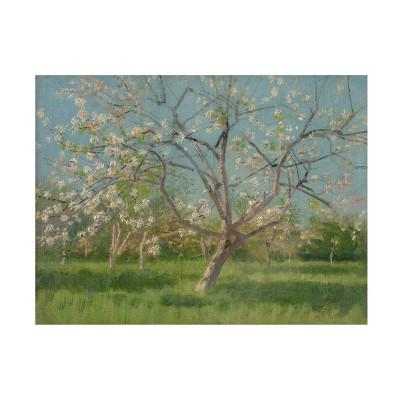 "14"" x 19"" Laszlo Mednyanszky 'Orchard Trees in Blossom' Unframed Wall Canvas - Trademark Fine Art"