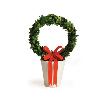 Preserved Boxwood Wreath 6 Inch Natural Greens With Ribbon Napa Home Garden Home Garden Nehabermis Home Décor