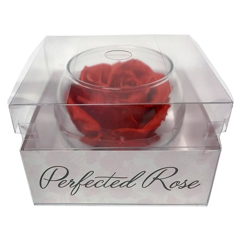 Bloomaker Perfected Rose - image 1 of 1