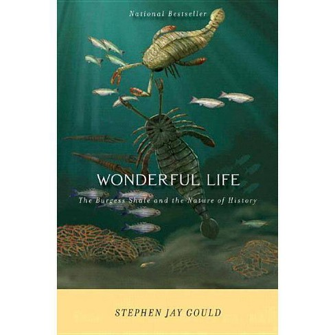 Wonderful Life - by  Stephen Jay Gould (Paperback) - image 1 of 1