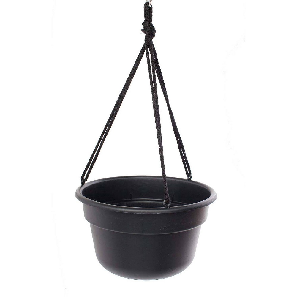 "Image of ""12"""" Dura Cotta Hanging Basket - Black - Bloem"""