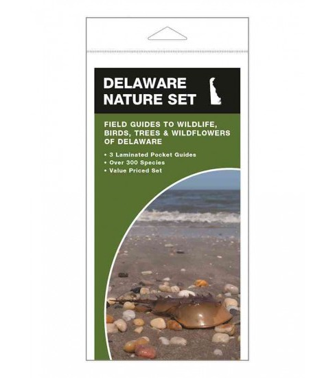 Delaware Nature Set : Field Guides to Wildlife, Birds, Trees & Wildflowers of Delaware (Paperback) - image 1 of 1