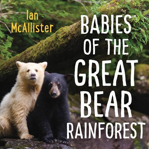 Babies of the Great Bear Rainforest - (Board_book) - image 1 of 1