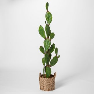 "61"" x 18"" Artificial Cactus In Basket Brown - Opalhouse™"