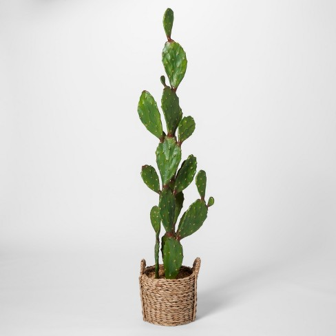 """61"""" x 18"""" Artificial Cactus In Basket Brown - Opalhouse™ - image 1 of 4"""