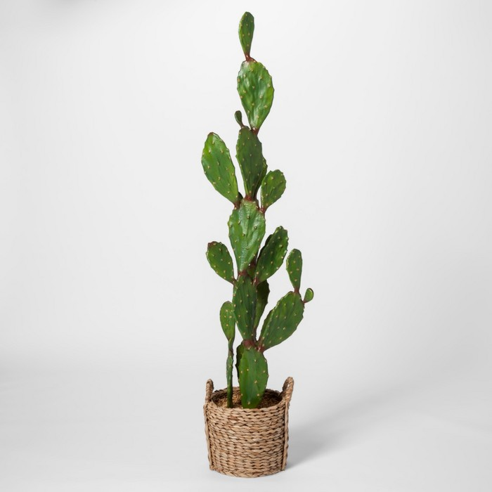 "61"" x 18"" Artificial Cactus In Basket Green/Brown - Opalhouse™ - image 1 of 6"