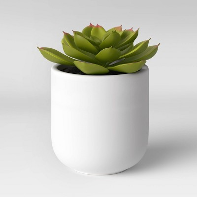 Small Succulent in Ceramic Pot - Threshold™
