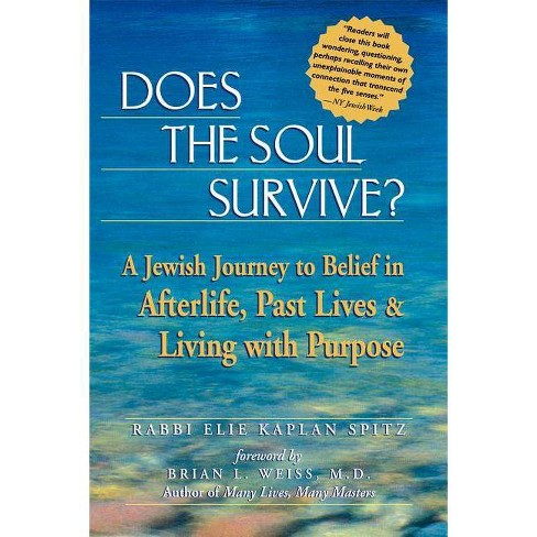 Does the Soul Survive? - by  Elie Kaplan Spitz (Paperback) - image 1 of 1