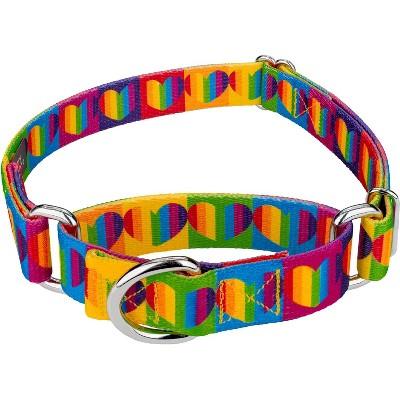 Country Brook Petz® Rainbow Hearts Martingale Dog Collar