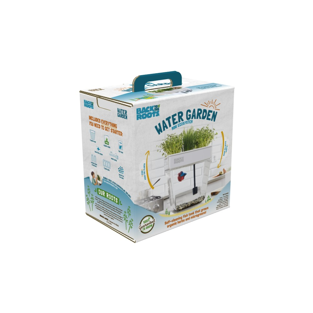 Water Garden Fish Tank Mini Eco System - Back to the Roots