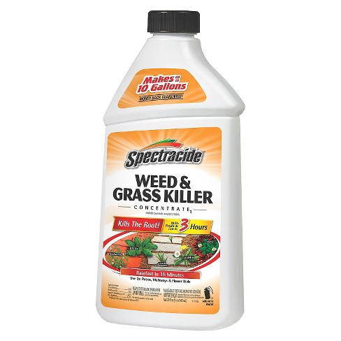 Spectracide Weed & Grass Killer 32oz Concentrate - image 1 of 1