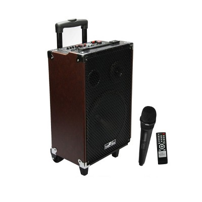 beFree Sound 10 Inch 500 Watt Bluetooth Portable Speaker
