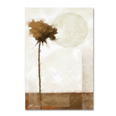 Sepia Rose' by The Macneil Studio Ready to Hang Canvas Wall Art