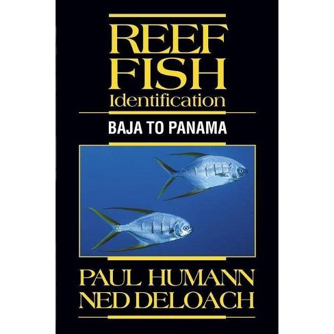 Reef Fish Identification - by  Paul Humann & Ned Deloach (Hardcover) - image 1 of 1