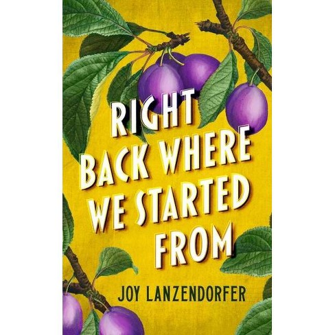 Right Back Where We Started from - by  Joy Lanzendorfer (Hardcover) - image 1 of 1