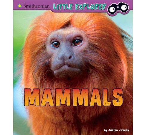 Mammals : A 4D Book -  by Jaclyn Jaycox (Paperback) - image 1 of 1