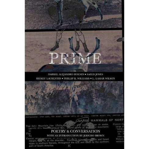Prime: Poetry & Conversation - (Paperback) - image 1 of 1