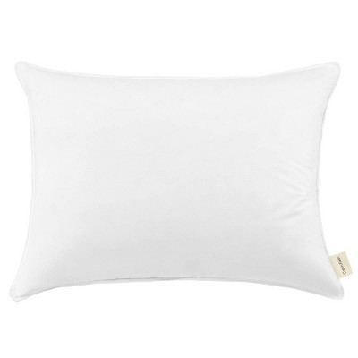 Down Surround Feather Bed Pillow - Beautyrest