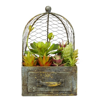 """Vickerman 10"""" Artificial Green Assorted Succulents,Metal Container and Cage."""