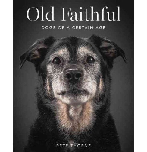 Old Faithful : Dogs of a Certain Age (Hardcover) (Pete Thorne) - image 1 of 1